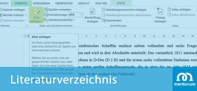 Anleitung & Beispiele - ein Literaturverzeichnis in Word erstellen
