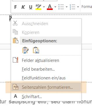 Seitenzahlen formatieren