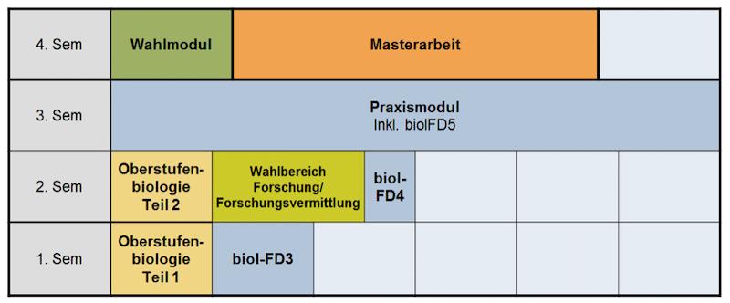 Beispiel für ein Verlaufsplan im Masterstudium