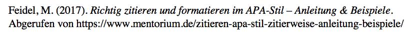 Beispiel-Eintrag für Internetquelle für APA-Literaturverzeichnis