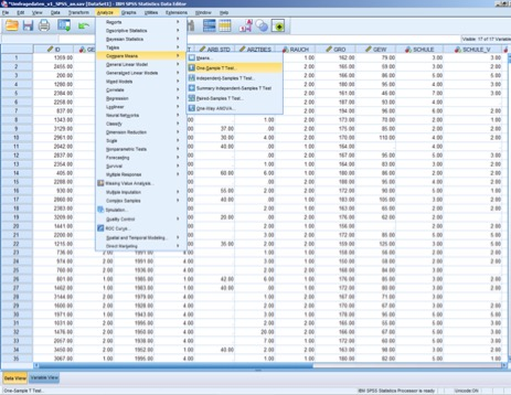 Menüleiste im Datenfenster