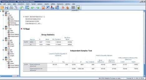 Ausgabeansicht in der SPSS Software