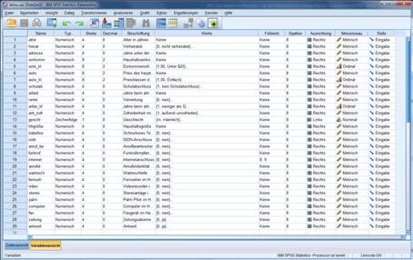 Statistik: Variablenansicht in SPSS