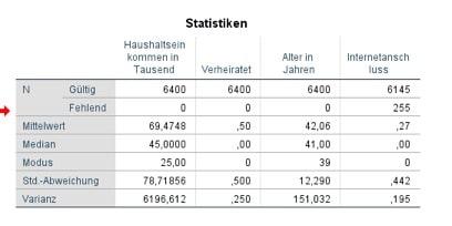 Datenausgabe der Statistik in SPSS