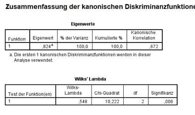 SPSS-Output der Diskriminanzanalyse